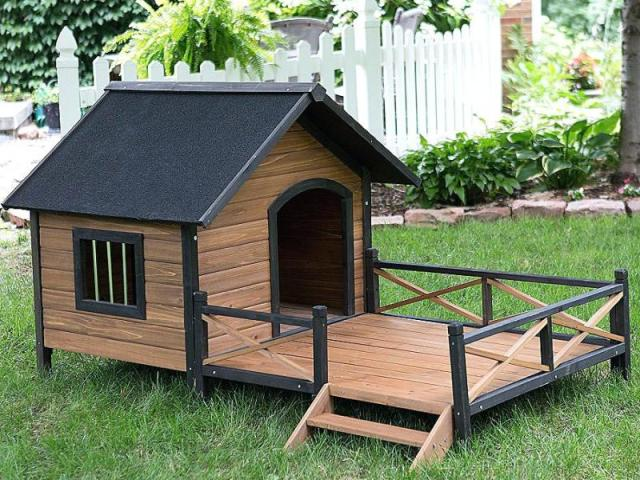 Como fazer uma casinha de cachorro