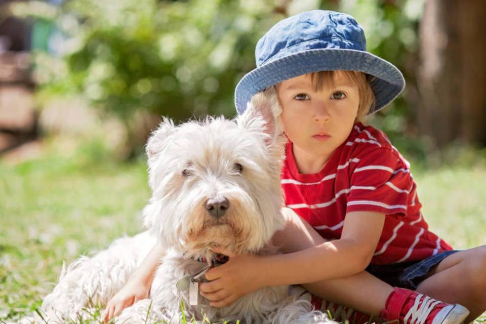 Como Cuidar de Cachorro