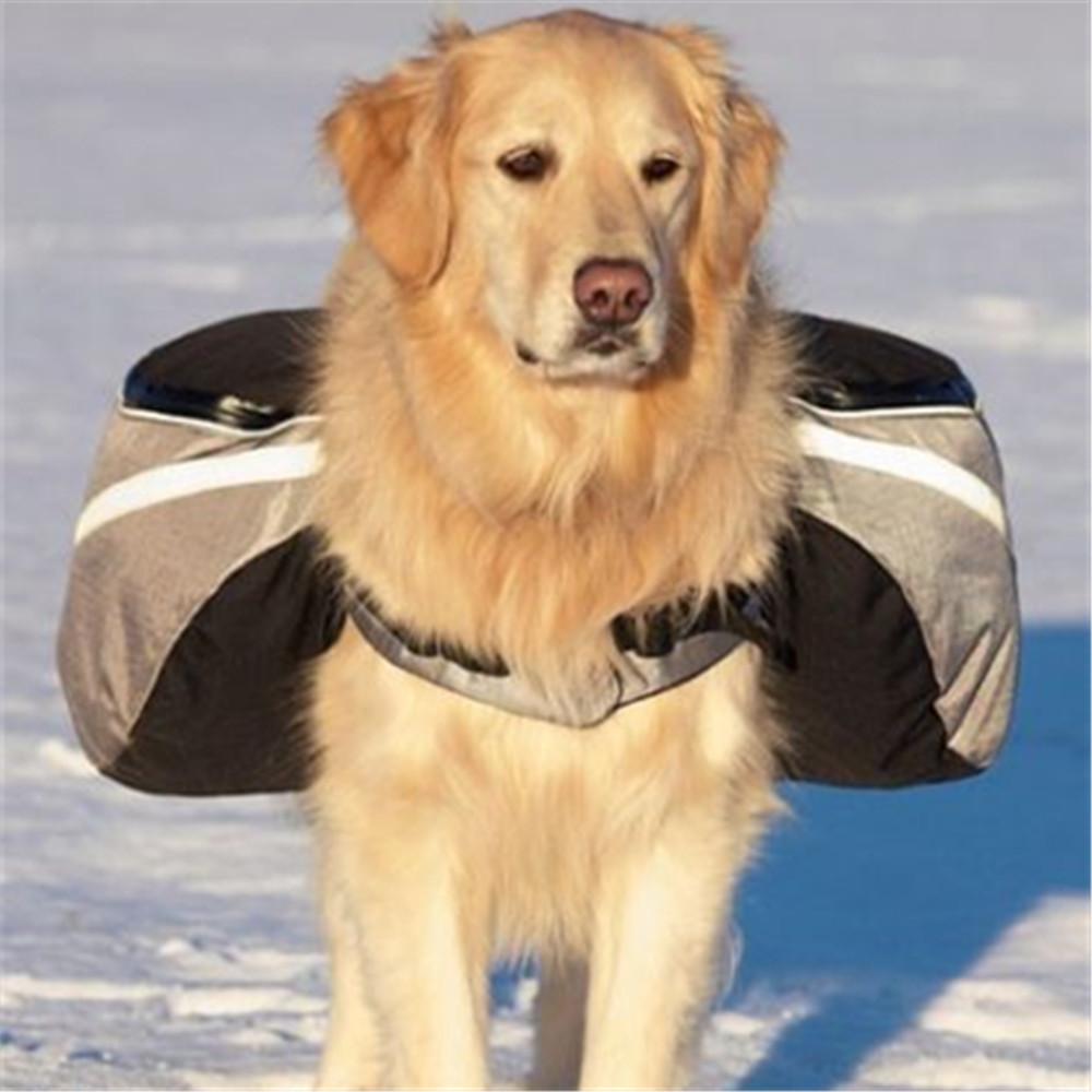 Kit para cachorro