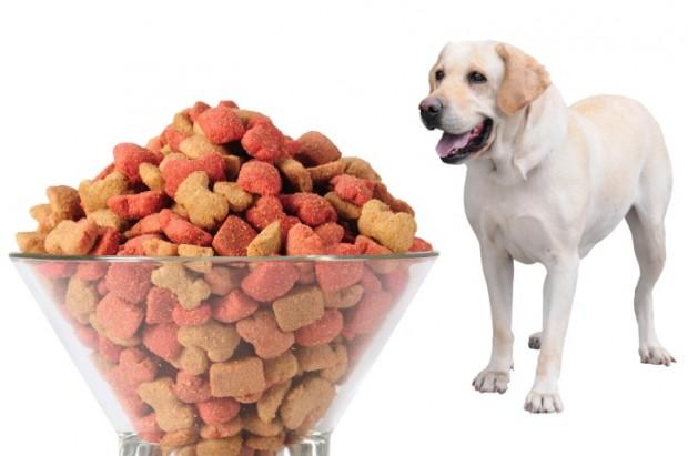 Como calcular quantidade de ração para cachorro