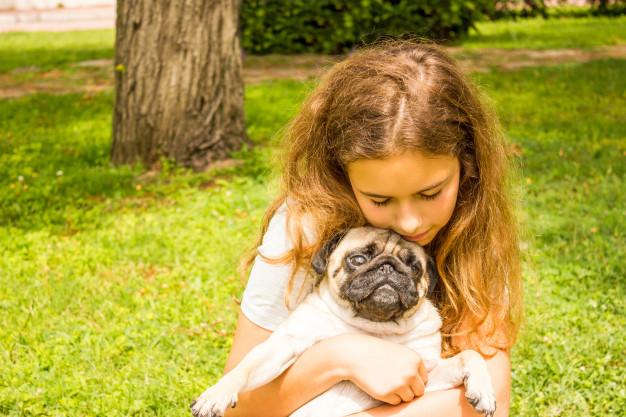 As melhores vitaminas para cachorros