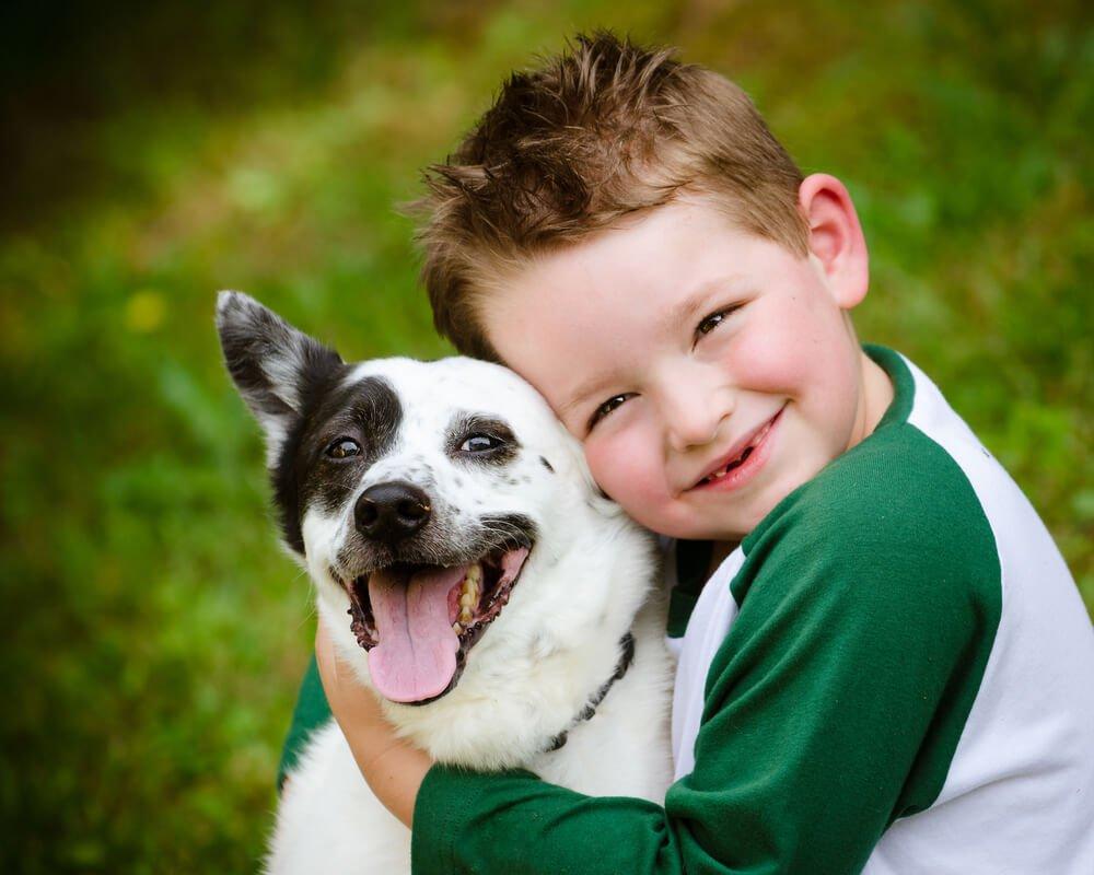 Como cuidar de um cachorro